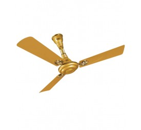 POLAR (1200MM) Wintop Ceiling Fan Golden Glow